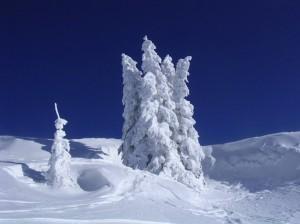 snow-alps