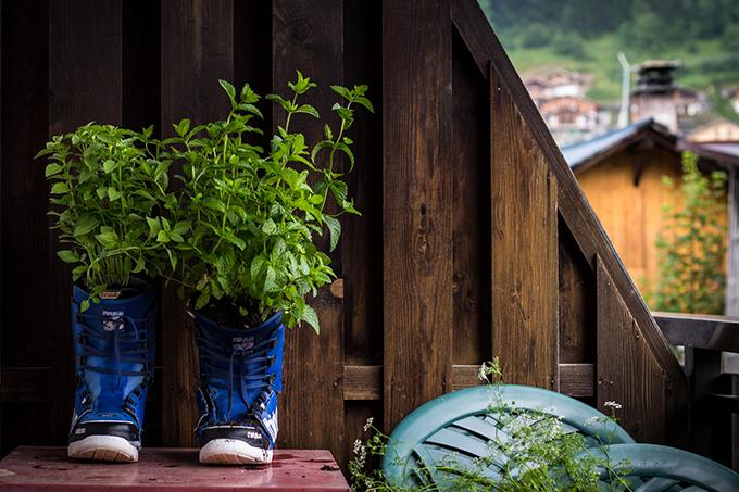 Boots-plants-flower-pots